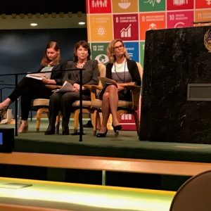 IHC Global President and CEO Judith Hermanson attends the United Nations High Level Panel Forum Partnership Exchange